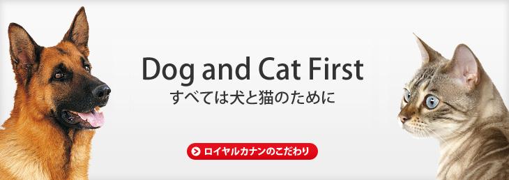 すべては犬と猫のために