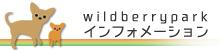 wildberryインフォメーション